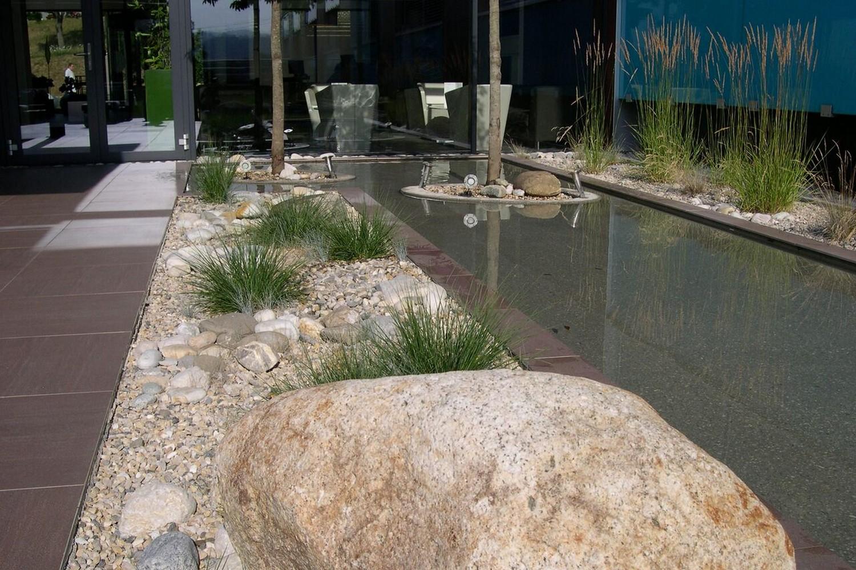 J N Jardins Naturels Creation Bassin Jardin Lausanne Vaud